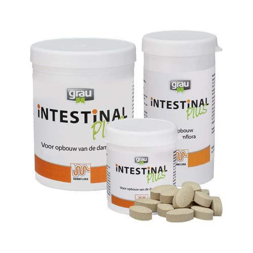 Grau Intestinal Plus - 60 Comprimés