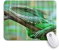 KAPANOU マウスパッド、木に登る髭があるドラゴントカゲ おしゃれ 耐久性が良い 滑り止めゴム底 ゲーミングなど適用 マウス 用ノートブックコンピュータマウスマット
