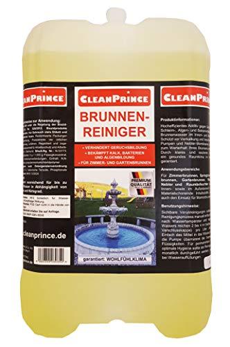 CleanPrince Brunnenreiniger 5 Liter | Brunnen Springbrunnen Algen Wasserklärung Reiniger Gartenbrunnen klären Brunnenklar Brunnenfresh