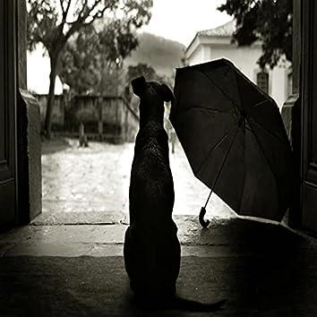 Corre na chuva