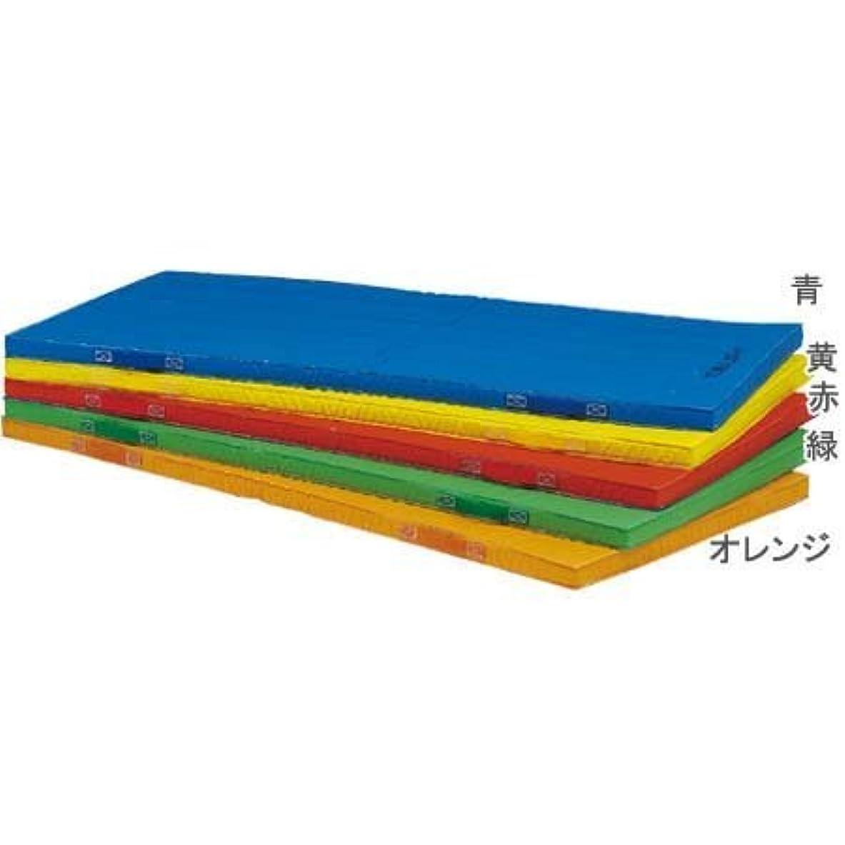独立微弱部門TOEI LIGHT(トーエイライト) エコカラーコンビネーションマット5㎝厚 120×240×5㎝ オレンジ T1181V