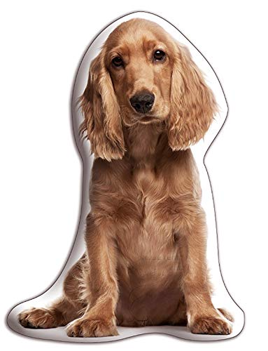 """Cocker Spaniel (Golden) Dog Gift – Beautiful Large Cuddle Cushion – Luxurious strokable shaped cushions, approximate size: H460mm x W400mm (18' x 16"""")"""