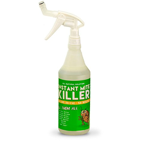 Instant Mite Killer - Destroy Spider Mites, Broad Mites, Powdery Mildew, and More, 32 Ounce (RTU) Ready-to-Use Spray with Patented 360° Spray Nozzle