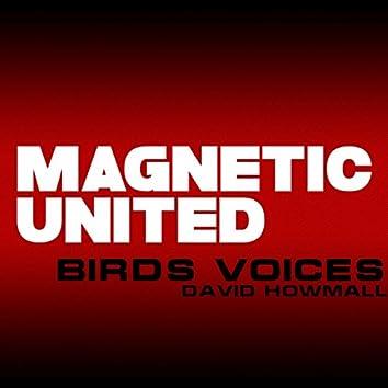 Birds Voices