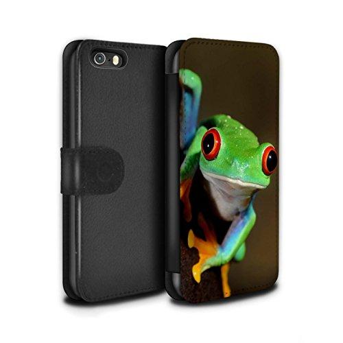 Hülle Für Apple iPhone SE Wilde Tiere Frosch Design PU Leder Tasche Brieftasche Schutz Handyhülle Flip Hülle