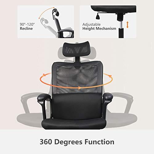Smugdesk Lumbar Support Office Chair
