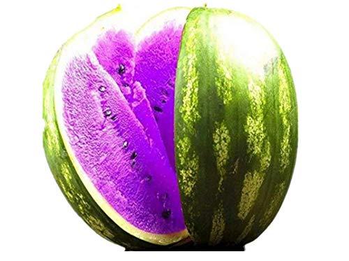 KINGDUO Egrow 50Pcs/Pack Pastèque Graines Jardin Coloré Comestible Vert Jaune Blanc Pastèque Semences-Violet
