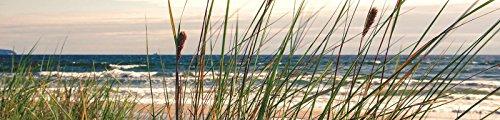DekoShop Fototapete Küche Vlies Tapete Strand und Tropen Wandtapete Dekoration Küsten-Gras AMD10669VEK VEK (250cm. x 60cm.)