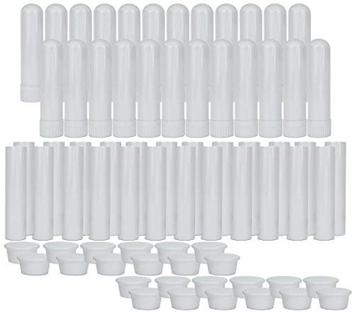 ペルソナドループ解釈的Essential Oil Aromatherapy Blank Nasal Inhaler Tubes (24 Complete Sticks), Empty Nasal Inhalers for Essential Oils [並行輸入品]