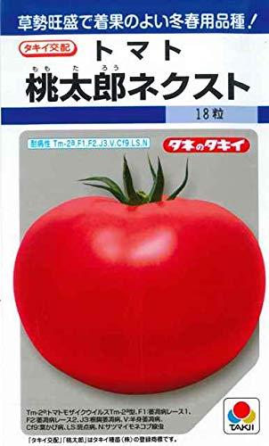 【種子】 トマト 桃太郎ネクスト タキイ種苗のタネ