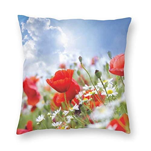 ZUL 3D Print Throw Pillow Covers,Idyllic Spring Meadow With Poppy And Daisy Flowers Sunny Sky Clouds Garden Design,Decorative Square Cushion Covers Case for Sofa Couch Home Decor