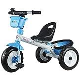 GWCD-STC Triciclos Trikes para niños 12 Meses a 6 años Triciclo...
