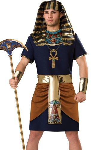 Egyptian Pharaoh Fancy Dress Costume Small