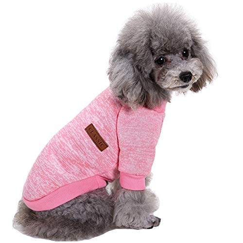 BINMUO Fashion New Pet Spring And Summer Casual Print T-shirt Dog Costumes Pet Clothes
