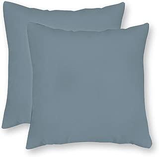 FabricMCC Pack of 2, Robert Allen Linen Slub Rain Pillow Cover, Seafoam Blue Throw Pillow, Cool Ocean Blue Accent Pillow, Solid Rain Collection Pillow Cover 16 x 16 Inch