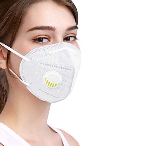 WESTA N95 Anti Pollution Protection face Mask & Respirator with Carbon filter - NIOSH Approved (with N95 filter)