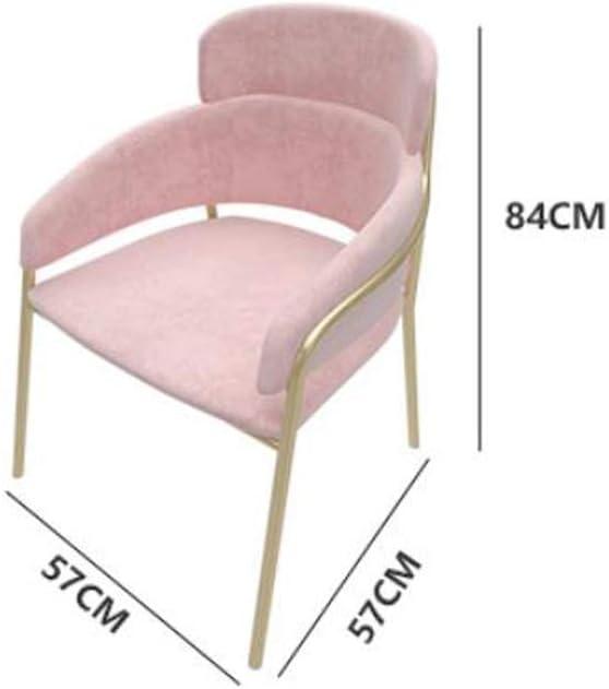 Solide Simple Chaise Bureau étudiant et Chaise de Maquillage Tabouret Retour à la Maison à Manger Chaise d'ordinateur Stable (Color : Blue) Green