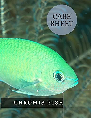 Chromis Fish: Care sheet (English...