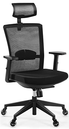 Ergonomic Office Chair, Tribesigns High Back Desk Chair with Lumbar Support, Breathable Mesh Back, Thick Seat Cushion, 2D Adjustable Headrest, Swivel Chair Task Chair for Home Office