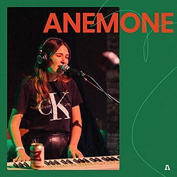 Anemone on Audiotree Live