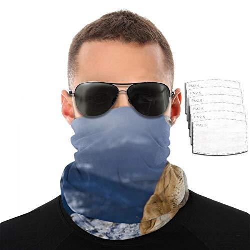 NA Puma Bandana – Outdoors Headwear bufanda, pañuelo, banda ancha, pasamontañas tubo máscara multifuncional para la cabeza