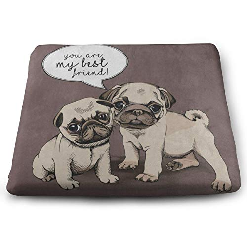 Ladninag Seat Cushion You're My Best Friend Quote Pug Puppy Dog Chair Cushion Cool Offices Butt Chair Pads for Indoor