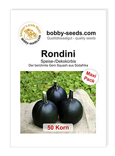 Bobby-Seeds Kürbissamen Rondini 50 Korn
