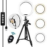 LED Ring Light 10 Pouces - Amzdeal Anneau de Lumière 3 Couleurs Dimmable 3000K-5600K Luminosité réglable Rotation 360°, avec télécommande et support mobile, pour Maquillage / Appel Vidéo / Selfie
