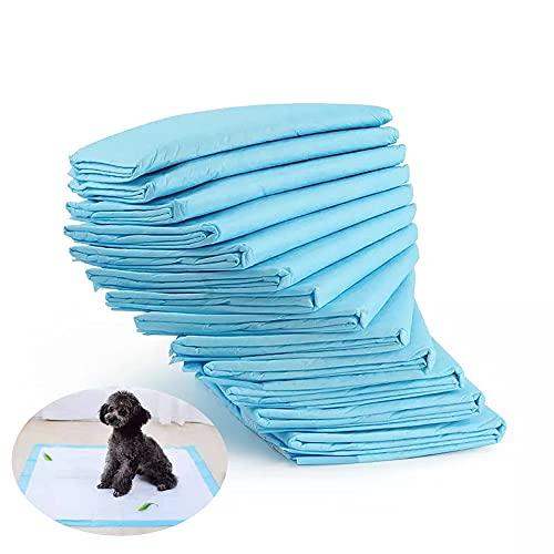 VRQG Empapadores de adiestramiento para Perros, Empapadores Perros Alfombrilla higiénica, Ultraabsorbente 33 * 45cm,Súper Absorbentes, Alfombrillas Higiénica Desechables para Mascotas