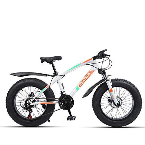 MOLINGXUAN Bicicleta de montaña, de 20 Pulgadas de 27 velocidades de Doble...