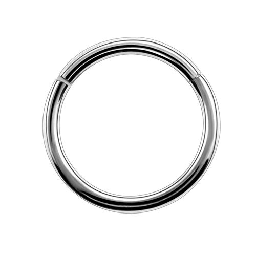 GDYX Nose ring G23 Titanium Alloy Hinged Nasal Ring, Earring Lip Piercing Unisex Fashion Jewelry 1.2x8mm Silver