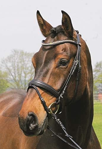 Hans Melzer Horse Equipment Trense Mechtersen, schwarz/silber, Vollblut