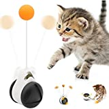 onehous Interactive Cat Toys, Funny Cat Toys Balance Swing Car with Catnip Ball and Chew Sticks Pet Cat Toy Chaser Play 360 Degree Self Rotating Ball Car Toy for Indoor Outdoor (Black)