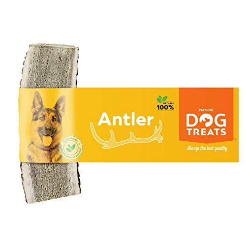 Corno di Cervo Ecologico per Cani 100% Naturale Masticare Giocattolo Osso, Taglia Small