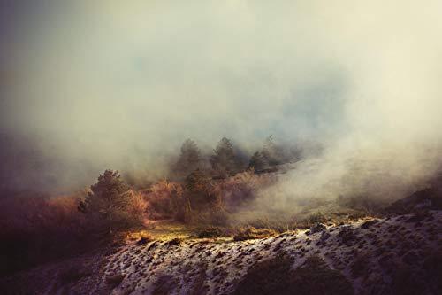 lxlwxh541 Diamant Painting Bilder Fog Trees Hill Tree Kreuzstich Kits Home 40X50Cm Round Geschenk