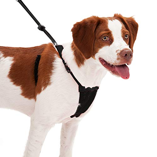 SPORN No Pull Dog Harness, Black, Medium