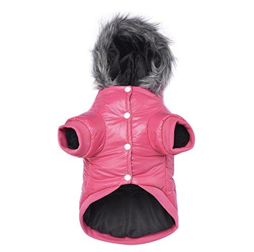 Namsan Pet Puppy Dog wasserfeste Kleidung und Winddichte Kapuzen Winter warme Kleidung Mantel Outwear -Pink -Kleine