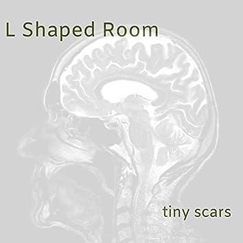 Tiny Scars
