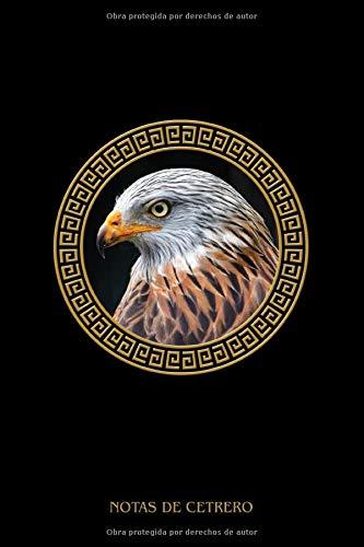 Notas de Cetrero: Cometa roja, regalo para ornitólogos, Caza con el halcón...