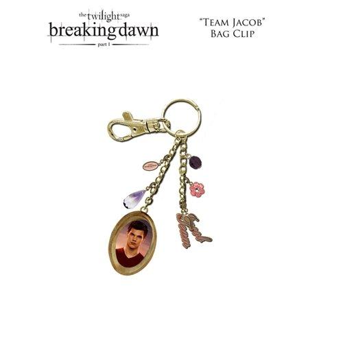 Twilight Breaking Dawn Schlüsselanhänger mit Karab (HEO)