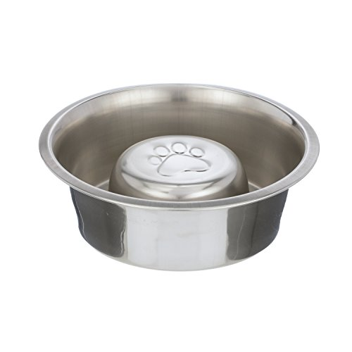 Neater Pet Brands Slow Feed Bowl Stainless Steel Feeder for Pugs