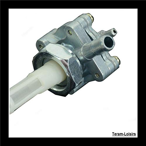 Teram Loisiss - Grifo de gasolina para moto Honda CB 400 VTEC/CBF 600 Hornet/CBF 500
