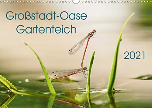 Großstadt-Oase Gartenteich (Wandkalender 2021 DIN A3 quer)