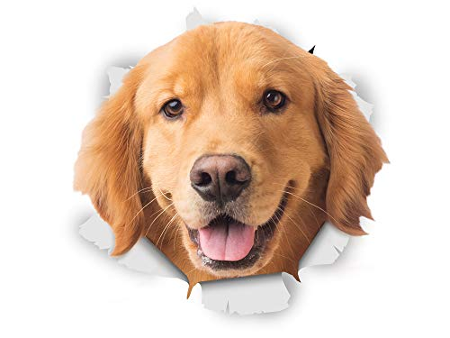 Winston & Bear 3D Dog Stickers - 2 Pack - Happy Golden Retriever For Wall, Fridge, Toilet And More Golden Retriever Dog Stickers