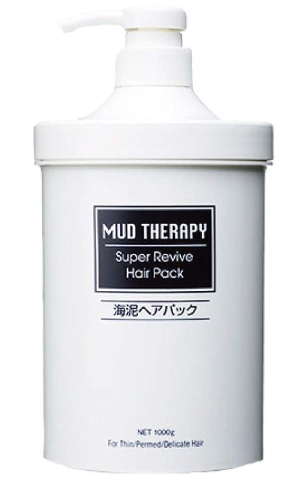 洗剤非効率的なリングレット【2本セット】海泥マッドテラピー ヘアパック Q10 1000g