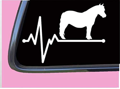 Mini Paard Lifeline 8