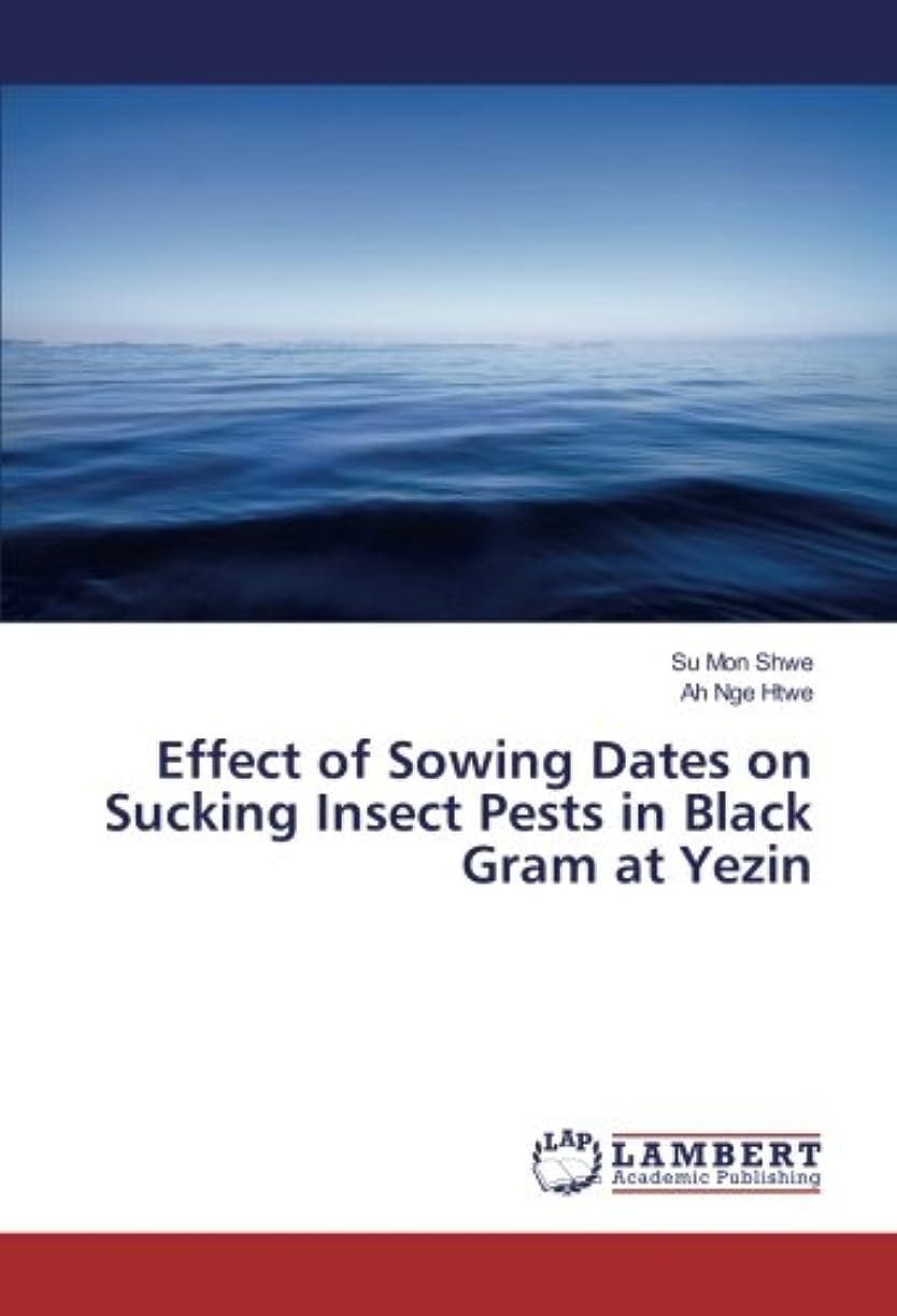 パーフェルビッド写真撮影困惑するEffect of Sowing Dates on Sucking Insect Pests in Black Gram at Yezin
