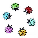 B&N Mini Imanes de Nevera Ladybug Frigorífico Imanes de Animales para Nevera para Pizarra y Nevera (Paquete de 6)