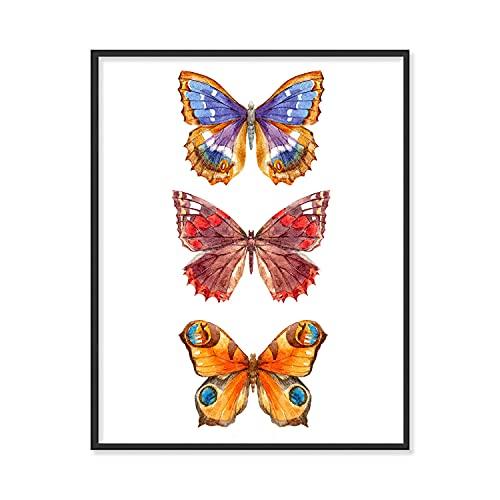 Butterfly Wall Art | Butterfly Collection, Set of 1 (11x14') | Orange Butterflies Decor, Watercolor Butterfly Art , Set 2