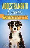 addestramento cane: la guida per conoscere, educare, addestrare il tuo cane e insegnargli 30 comandi (coll. addestramento cani)